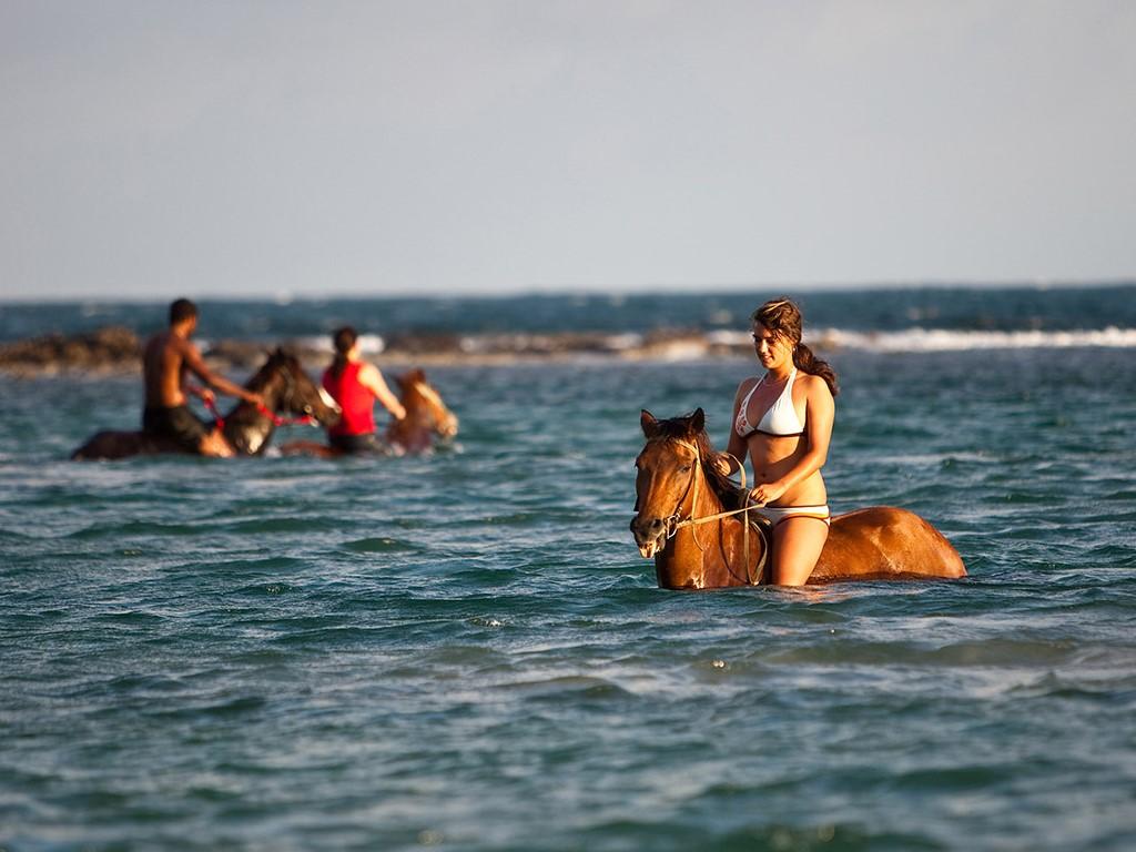 Montego Bay Horseback Riding Tour